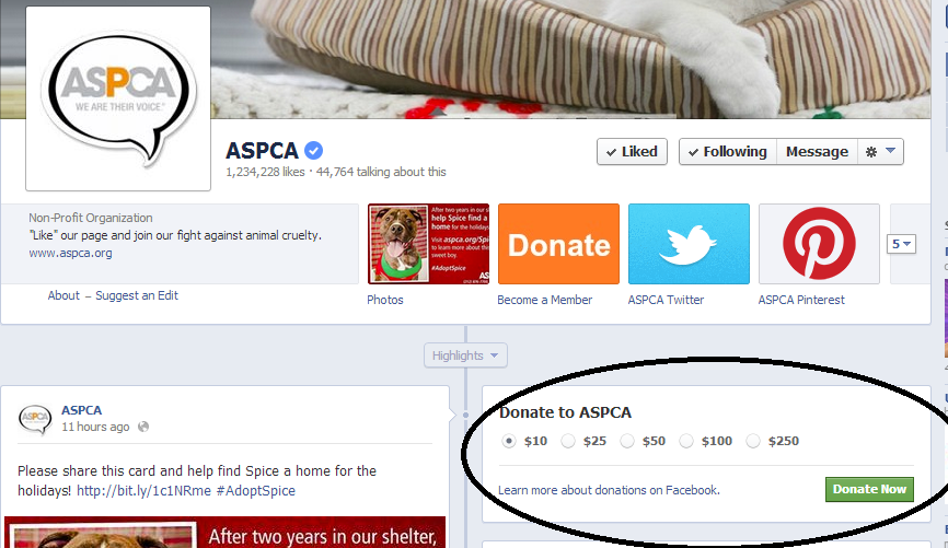 Facebook Tests Donate Button for Nonprofits